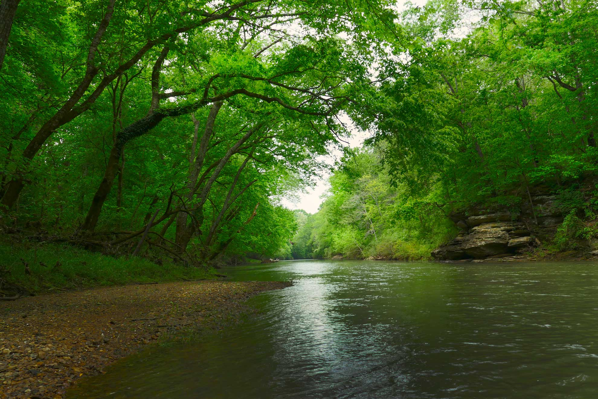 West Harpeth River
